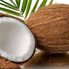 NATURAL coconut fiber